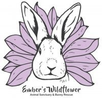 Ember's Wildflower